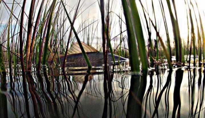 Matagorda bay fishing spots texas fishing maps and for San antonio fishing spots