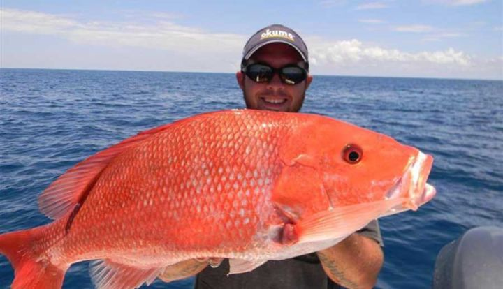 South padre island offshore fishing spots texas fishing for Bay fishing south padre island